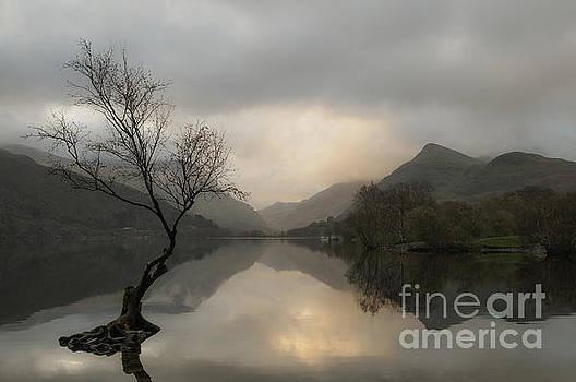 Sunrise On Llyn Padarn, North Wales UK by Amanda Elwell