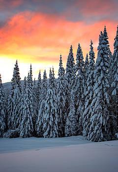Sunrise on Mt. Spokane by James Richman