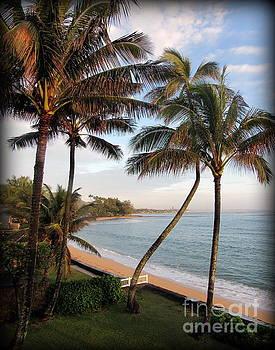 Sunrise on Oahu Palm Trees by Joy Patzner