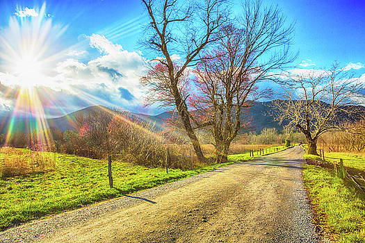 Sunrise on Sparks Lane Smoky Mountains National Park by Carol Mellema