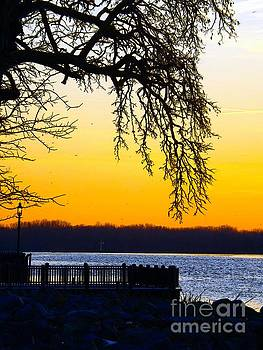 Robyn King - Sunrise On The Delaware River Bristol Pennsylvania Digital Painting