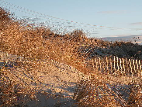 Sunrise on the dunes by Donald Cameron