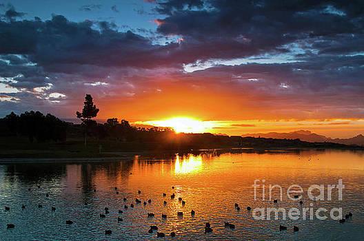 Sunrise on the Lake by Desert Images