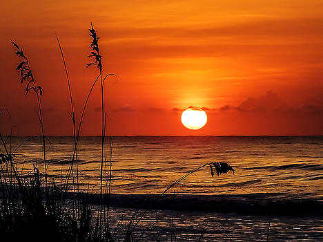 Sunrise over the Sand Dunes by Terry Shoemaker