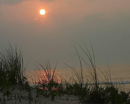 Sunrise over the dunes by Carla Neufeld