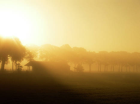 Sunrise over the field by Playfulfoodie
