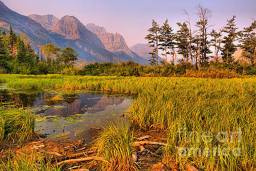 Sunrise Over The Glacier Wetlands by Adam Jewell