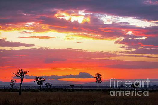 Sunrise over the Mara by Jane Rix