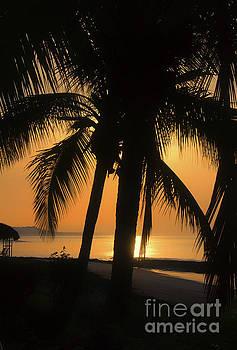 Bob Hislop - Sunrise Panama