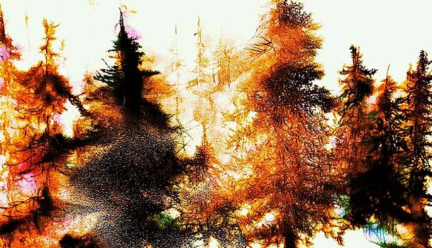 Sunrise Pines by Julia S Powell