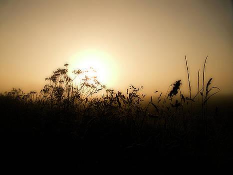 Sunrise by Playfulfoodie