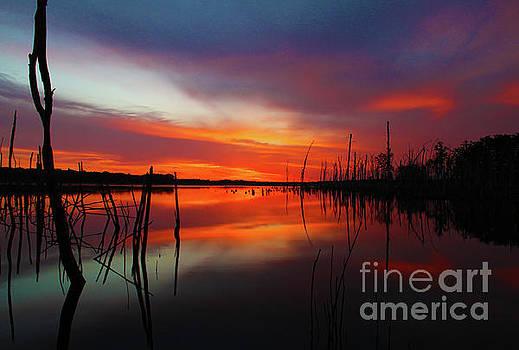 Sunrise Preglow by Roger Becker