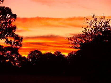 Sunrise by Ramona Barnhill