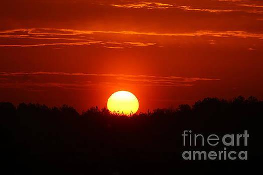 Sunrise by Robin Coaker