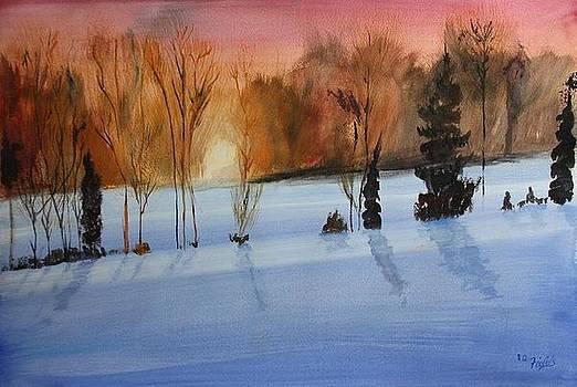 Sunrise by RQ Fields