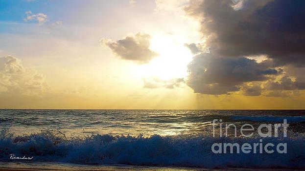 Ricardos Creations - Sunrise Seascape Treasure Coast Florida B3