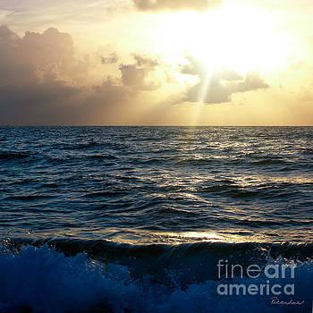 Ricardos Creations - Sunrise Seascape Treasure Coast Florida C5