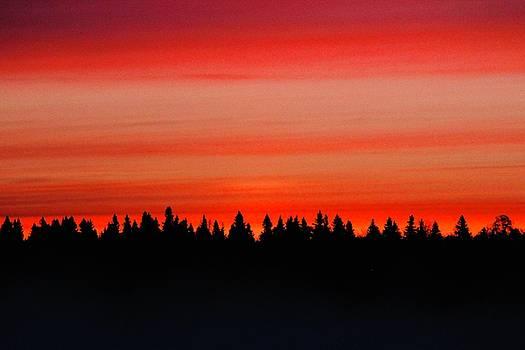 Sunrise by Shirley Kurian