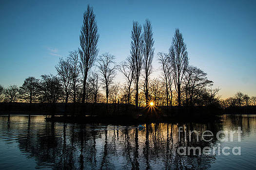 Sunrise silhouettes. by Andy Bradley