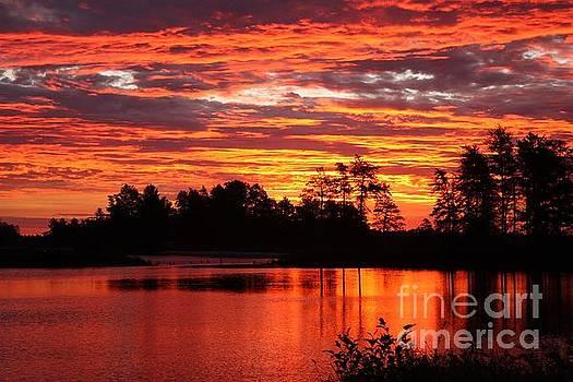 Sunrise Skies by Teresa McGill