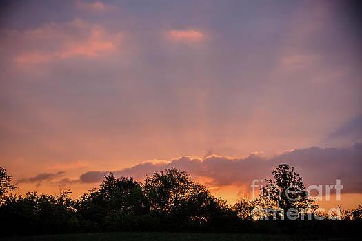 Sunrise Sunrays by Cheryl Baxter