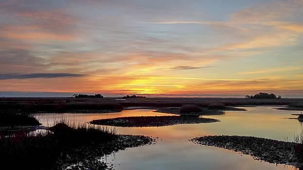 Sunrise-sunset Art Photo - Low Tide Ii by Jo Ann Tomaselli