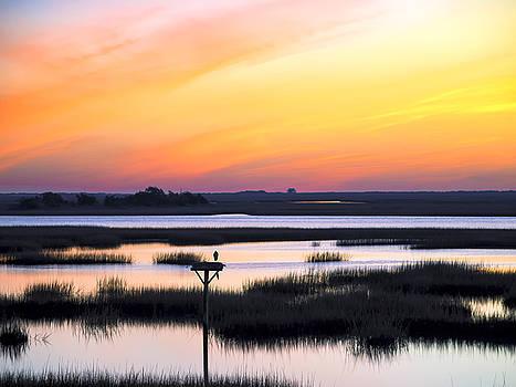 Sunrise Sunset Image Art - Dawn Patrol by Jo Ann Tomaselli