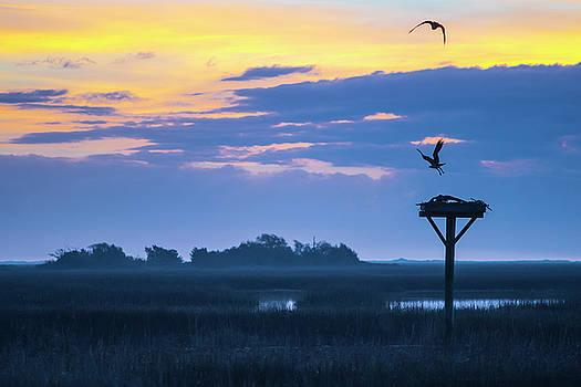 Sunrise Sunset Image Art - Good Friday by Jo Ann Tomaselli
