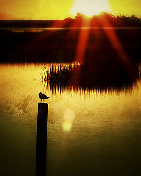 SUNRISE SUNSET PHOTO ART - A RAY OF HOPE by JO ANN TOMASELLI by Jo Ann Tomaselli