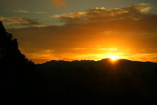 Sunrise Three 09 29 17 by Joyce Dickens