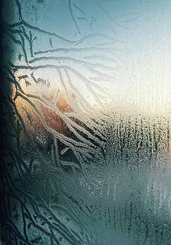 Sunrise through the Frost by Brian Sereda