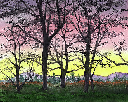 Sunrise Through The Trees Watercolor  by Irina Sztukowski