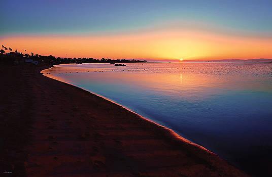Sunrise by Tony Badwy