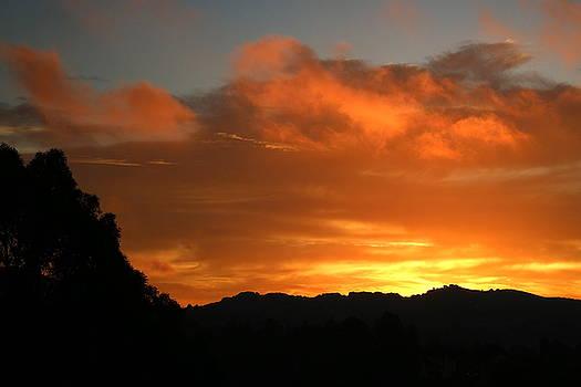 Sunrise Two  09 29 17 by Joyce Dickens