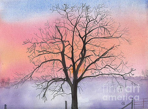 Sunrise Walnut Tree 2 watercolor painting by Conni Schaftenaar