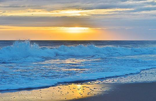 Sunrise with a Splash by Barbara Ann Bell