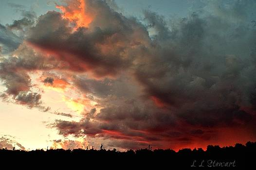 Sunrise with Rain by L L Stewart