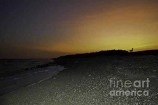 Sunset 4 by Kenroy Rhoden
