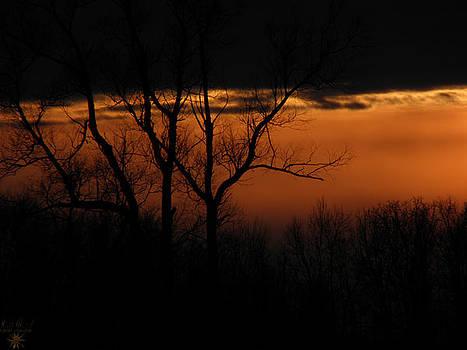 Scott Hovind - Sunset 6