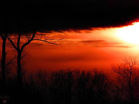 Scott Hovind - Sunset 8