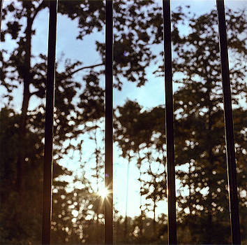Sunset by Ana Turrubiartes
