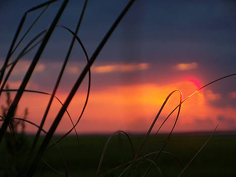 Sunset and Seaoats at the Edge of America by Melanie Snipes