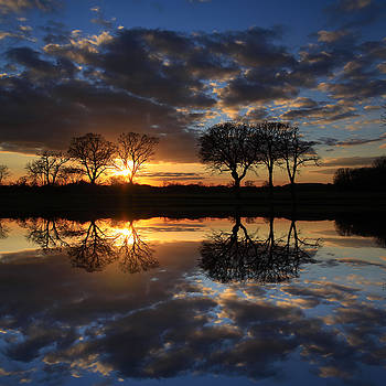 Sunset and trees reflected by Martin Fry