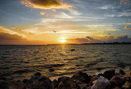 Sunset at Cedar Key by Rebecca Hiatt