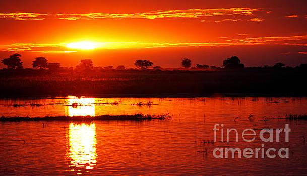 Sunset at Chobe river, Botswana by Wibke W