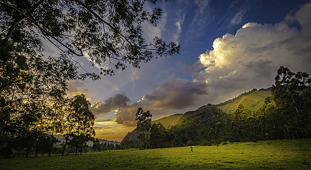 Francisco Gomez - Sunset at Cocora