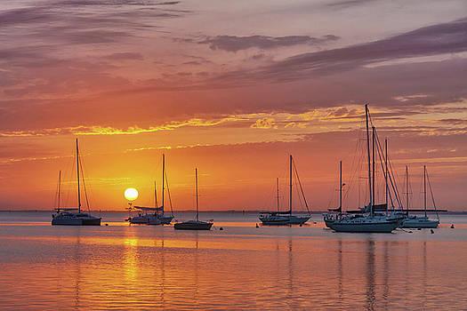 Sailboat Sunset by Claudia Domenig