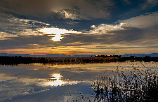 Bruce Bottomley - Sunset at Hill Slough