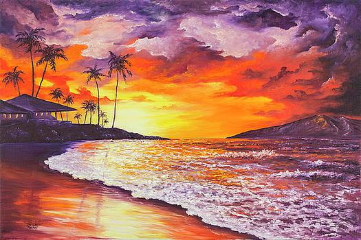 Sunset At Kapalua Bay by Darice Machel McGuire
