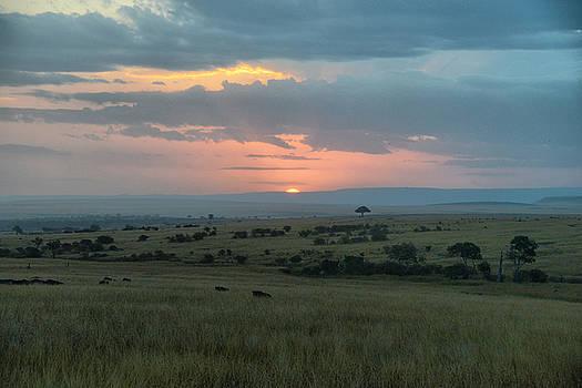 Sunset at Masai mara by Balram Panikkaserry